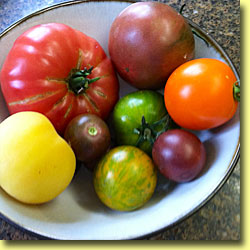 Picture: Tomato Peach, Azorean, Lee, Cherry, Green Zebra