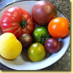 Picture: Tomato Peach, Azorean, Lee, Cherry, Green Zebra