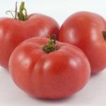 Picture: Tomato Vinson Watts